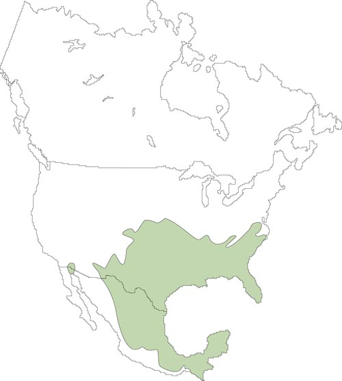 Map of cotton rat distribution in north america