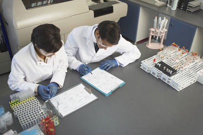 laboratory workers reviewing test results
