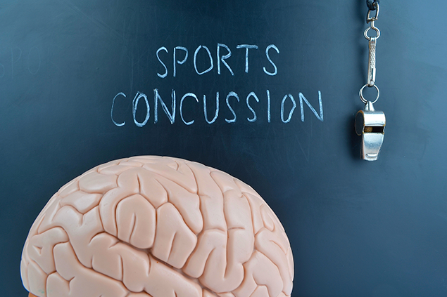 chalkboard with whistle and brain - sports concussion