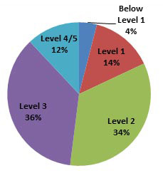 PIAAC* literacy scale pie chart. Below level 1: 4%. Level 1: 14%. Level 2: 34%.Level 3: 36%.Level 4/5: 12%.