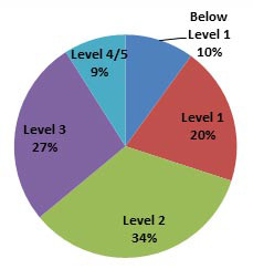 PIAAC* numeracy scale pie chart.  Below level 1: 10%. Level 1: 20%. Level 2: 34%.Level 3: 27%.Level 4/5: 9%.