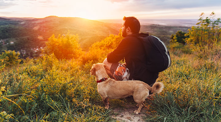 Man hiking with dog in mountains at sunset