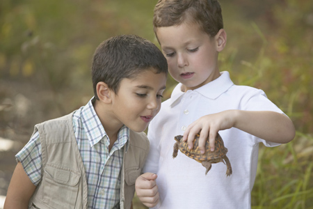 Two boys holding a turtle