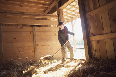 man cleaning a horse stall