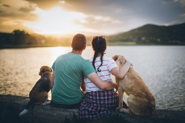 couple sitting in front of lake with two dogs