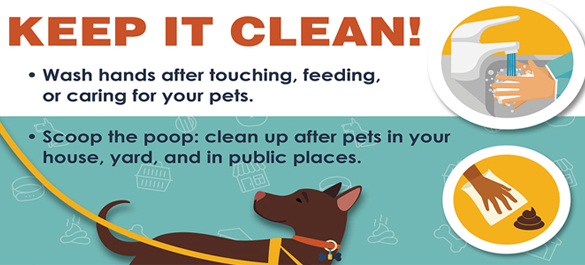 Healthy Pets habit graphic for keeping your hands clean