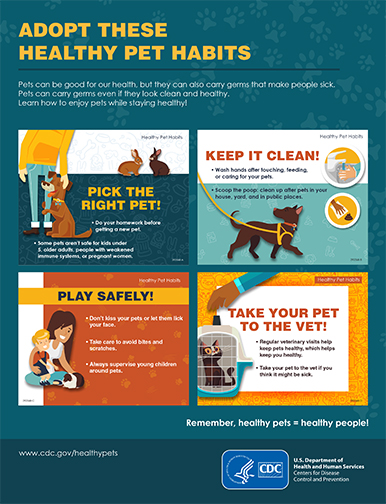 Adopt These Healthy Pet Habits poster