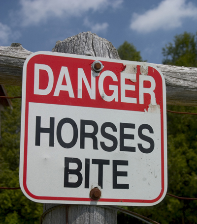 Sign on a fence that reads: Danger: Horses Bite