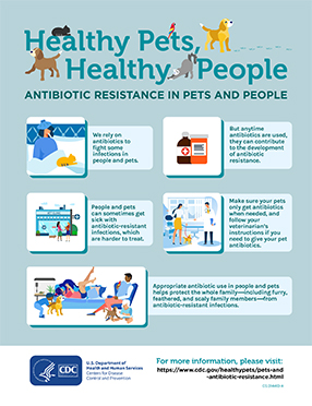 Antibiotic Resistance in pets and people poster