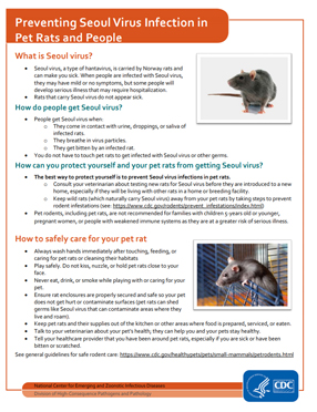 Preventing Seoul Virus Infection In Pet Rats And People Hantavirus Dhcpp Cdc