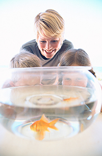 Mother and two children watching a goldfish in a bowl.