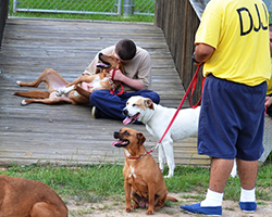 Youths at a juvenile detention center in Georgia help save homeless pets. (Photo courtesy of Rescue 2 Restore)