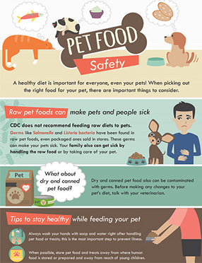 Publications Infographic cover for Pet Food Safety