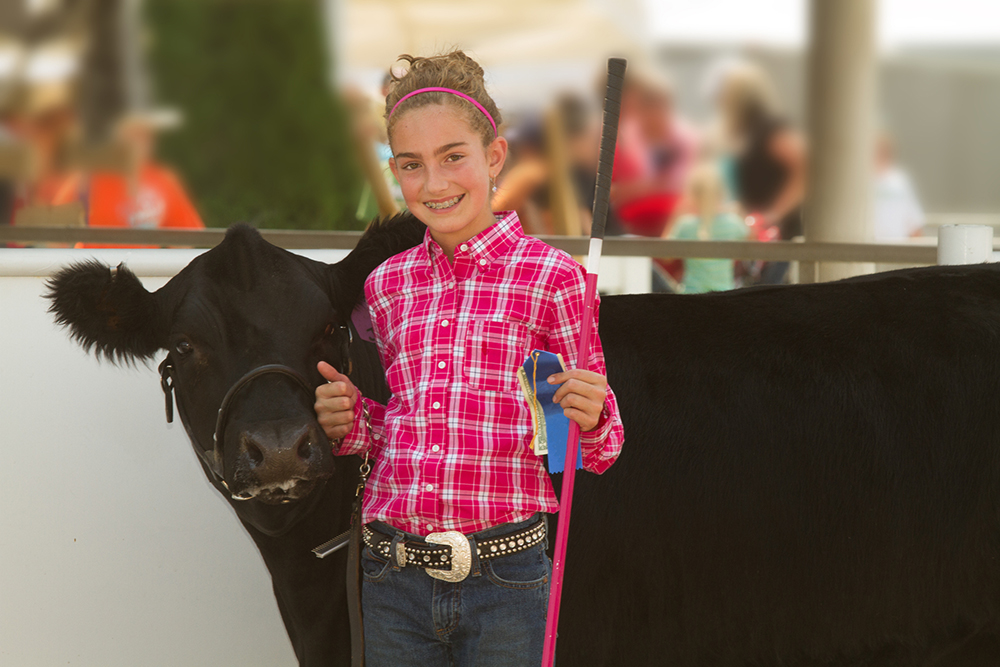 Blonde girl in pink at a county fair next to a black cow