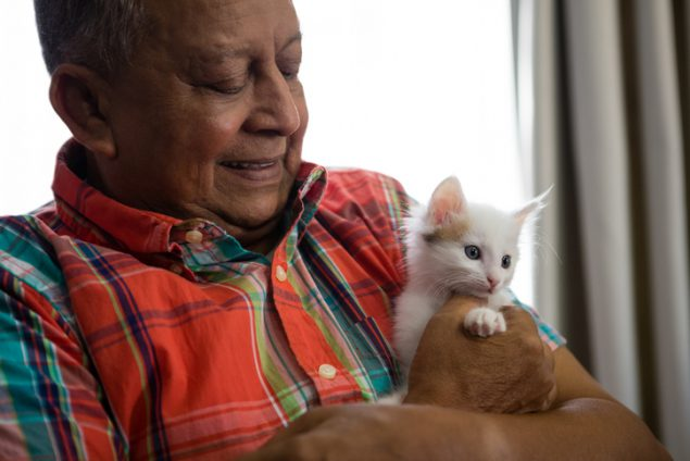 Senior man playing with kitten at nursing home