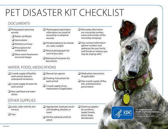 Pet Disaster Kit Checklist