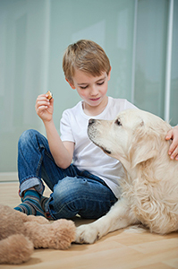 A boy gives his dog a treat