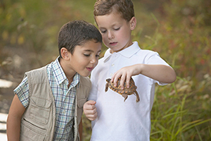 Two boys look at a turtle.