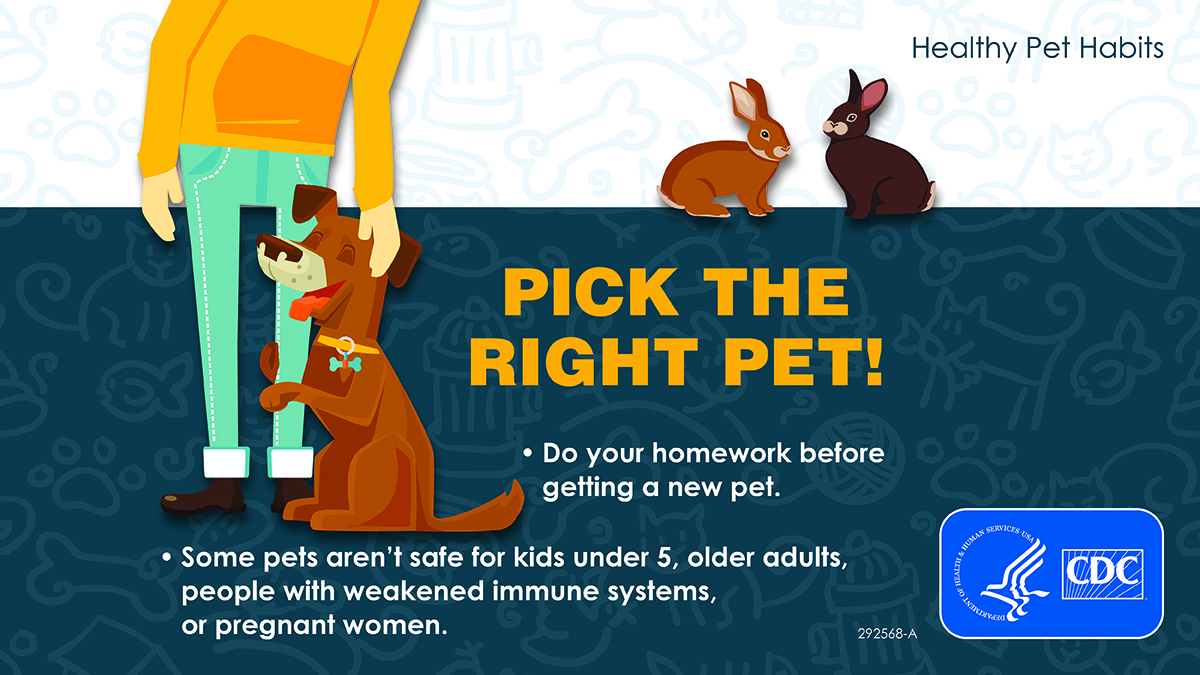 Social Media Graphic: Pick The Right Pet