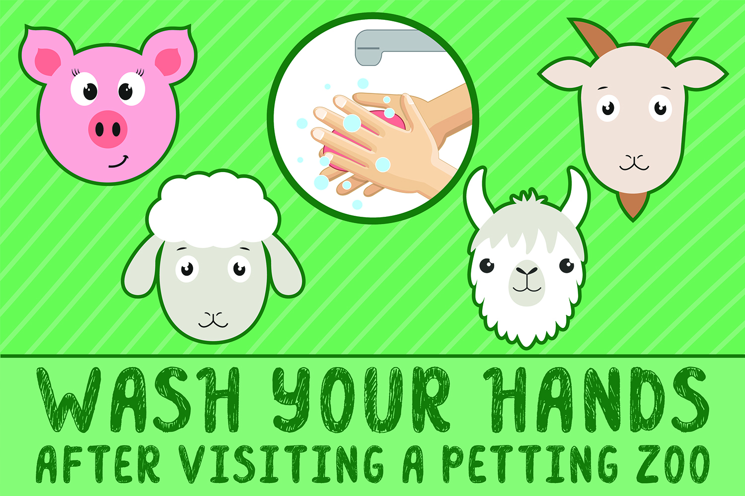 Wash Your Hands After Visiting A Petting Zoo sticker