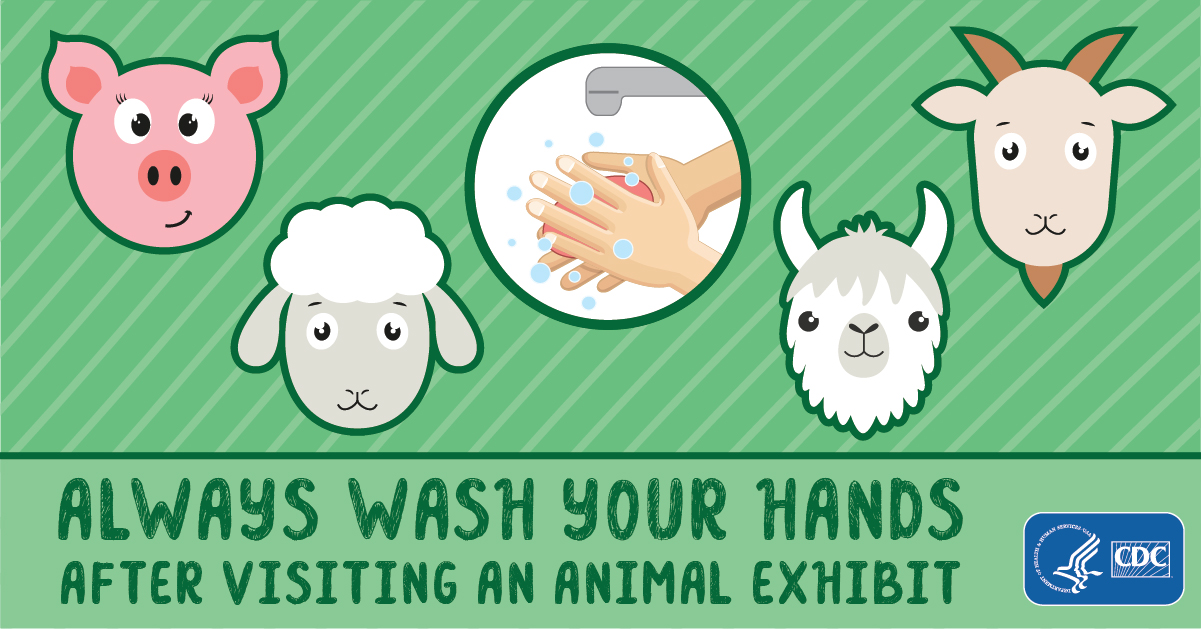 Always Wash Your Hands After Visiting an Animal Exhibit for Facebook