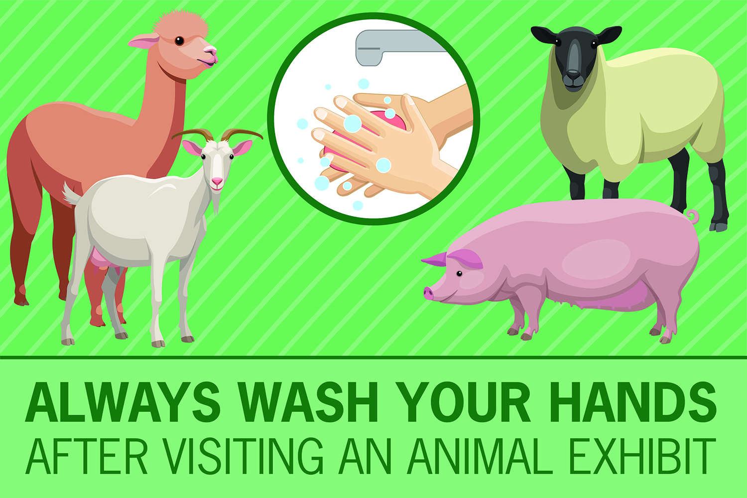 Always Wash Your Hands After Visiting An Animal Exhibit Sticker