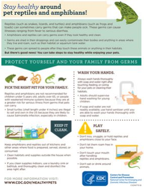 Publications Infographic cover for Stay Healthy Around Pet Reptiles And Amphibians