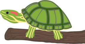 Illustration of a turtle on a branch