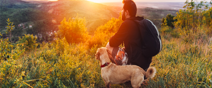 Dog and a man watching the sun rise.
