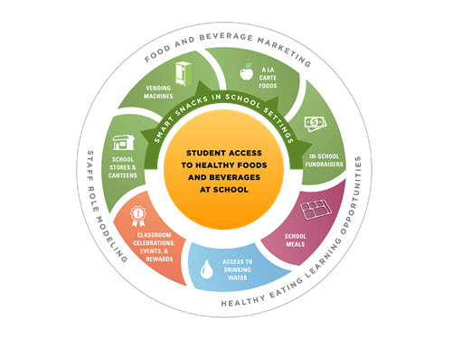 The CDC recommends that schools implement policies and practices to create a nutrition environment that supports students in making healthy choices by providing them with access to healthy and appealing foods and beverages, consistent and accurate messages about healthy eating, and opportunities to learn about and practice healthy eating.
