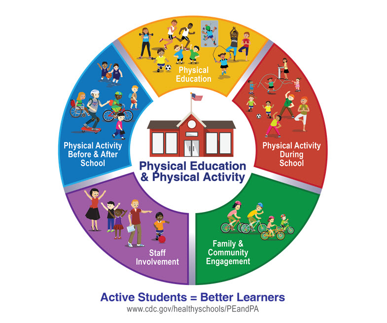 The CDC and other national organizations recommend a comprehensive, school-wide approach to physical activity that provides opportunities for students to be physically active before, during, and after the school day. A Comprehensive School Physical Activity Program (CSPAP) has five components: physical education, physical activity during school, physical activity before and after school, staff involvement, and family and community engagement.