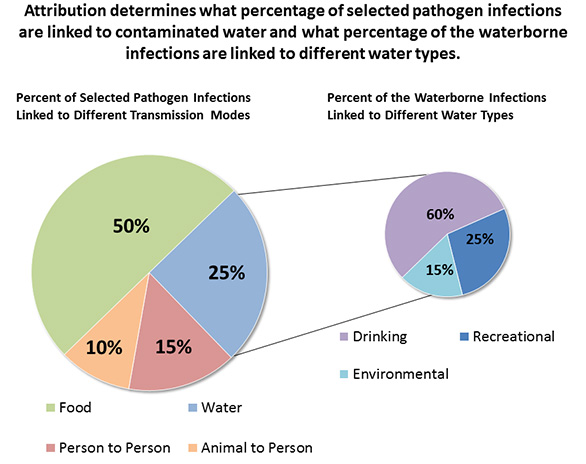 Goals strategy for development of a comprehensive waterborne attribution pie chart showing how attribution determines what percentage of selected pathogen infections are linked to ccuart Choice Image