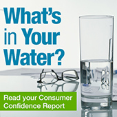 A button image for CDC's Consumer Confidence Reports page.