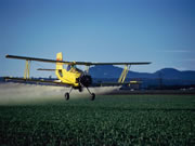 Photo of a plane dumping fertilizer on fields from the air