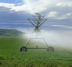 Photo of a water sprayer irrigating a field