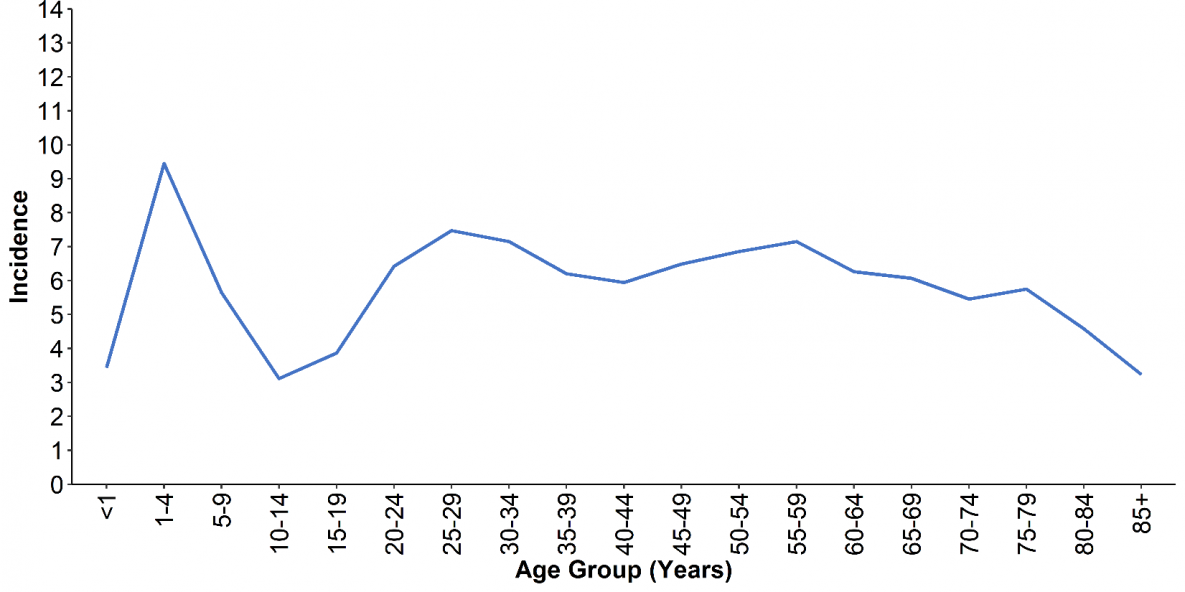 Figure 3. Incidence* of giardiasis cases, by age group