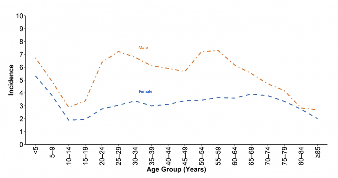 Figure 4. Incidence* of giardiasis cases, by sex and age group