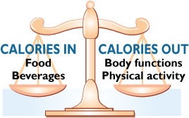 scale caloric balance Calories in and calories out made easy