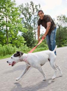 hombre paseando a un perro