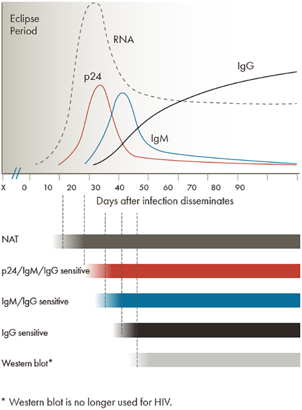 Figure indicating that each type of HIV test has its own testing window