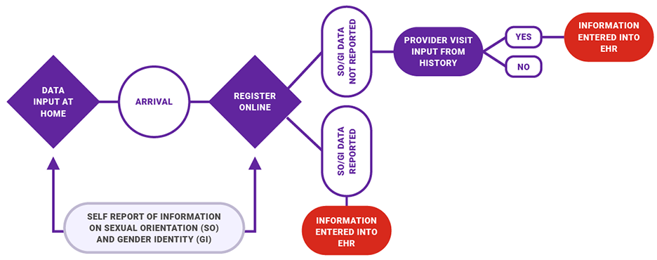 A flow chart shows that in the sexual  orientation (S O) and gender identity (G I) data-collection process, persons may provide data electronically from home or when they visit a health care facility. If the S O/G I data is reported, the information is entered into the electronic health record, or E H R. If the SO/GI data is not reported, is there provider visit input from the history? If yes, the  information is entered into the E H R.