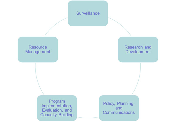 Core Functions - Circle graphic with Surveillance; Research and Development; Policy, Planning and Communications; Program implementation, evaluation and capacity building; and Resource Management