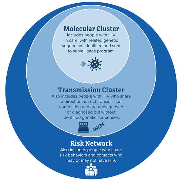 This graphic shows Molecular cluster, transmission cluster and risk network and their interaction with each other.