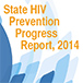 2014 State Progress Report