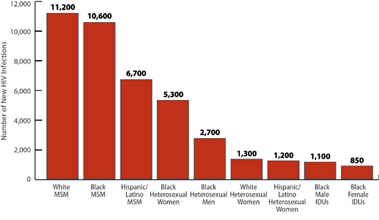 This bar chart shows the number of new HIV infections in 2010 for the most-affected sub-populations. The most new infections occurred among white men who have sex with men, or MSM, (11,200) followed by black MSM (10,600), Hispanic MSM (6,700), black heterosexual women (5,300), black heterosexual men (2,700), white heterosexual women (1,300), Hispanic heterosexual women (1,200), black male injection drug users, or IDU, (1,100) and black female IDU (850).