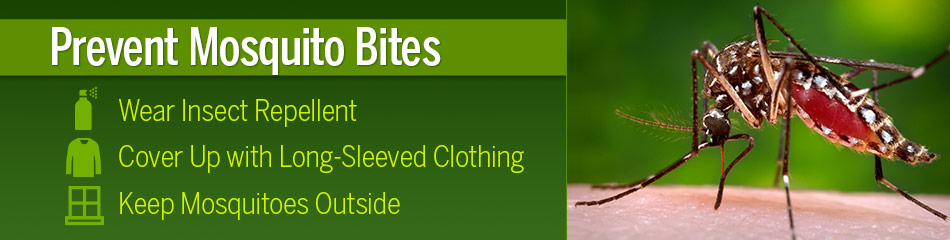 Prevent Mosquito Bites this Summer. Wear Insect Repllent. Cover Up with Long-Sleeved Clothnig. Keep Mosquitoes Outisde.