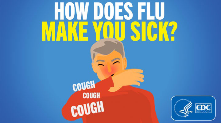 How Does Flu Make You Sick graphic