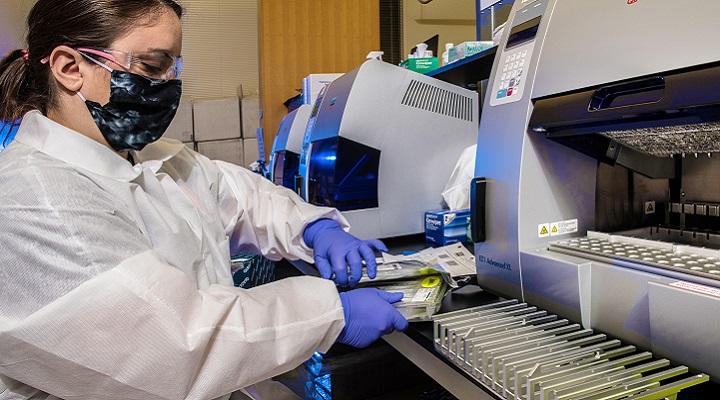 laboratorian testing samples for SARS-COV 2