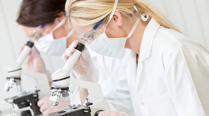 researchers using microscope