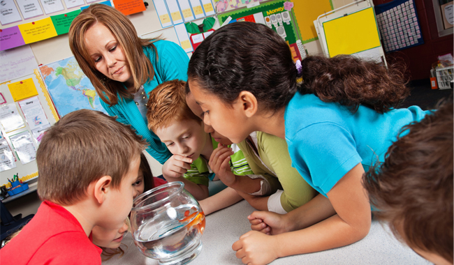 Children watching fish in bowl while teacher observes